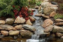 ideer til dam i haven