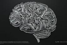 I like brains (Zombies)  / by Joseph A