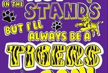 Tiger Stadium and anywhere with friends and family / by Danielle Edwards
