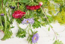 Deko, Blumen und mehr