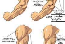 Man muscle drawing