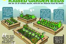 Gardening / by Sean Preston