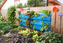 bahçecilik / A . Y çifliği