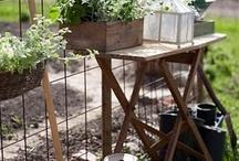 Garden ideas / by Melanie Booker