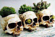 Organic Coolness / Growing inspiration & ideas