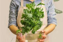 Kale / Il cavolo nero, detto anche #kale, è una varietà di ortaggio la cui croccantezza lo rende ideale per la preparazione di #minestroni e #zuppe, ma è buono anche consumato crudo, ad esempio nelle #insalate.