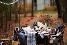 Autumn / Deko, Landschaft, Einrichten, Zuhause, Home, Ideen und Style im Herbst, decoration, decorate your home