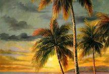 palmeras puesta de sol
