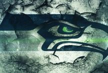 Seahawks / by Tracy Duncan