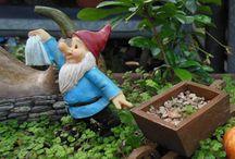 Gnome gardens / 7 Dwarfs