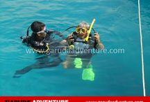 Pulau Sepa / Pulau Sepa, asik untuk kegiatan outbound, Marketing  0877-7349-0007, 0812-1925-242
