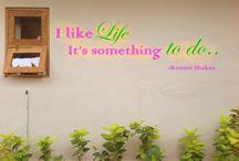 Omah Biu Guest House / Appreciate your sense by consuming beauties!