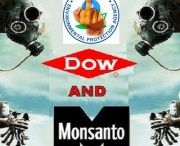 Enlist Duo -STOP Monsanto and DOW! www.covvha.net / Simply put, Enlist Duo is a very bad idea. This will drive a massive increase in pesticide use that threatens to destroy vulnerable crops, while placing the burden of both increased costs and health risks on farmers and rural communities.