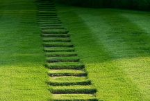 Paths in gardening