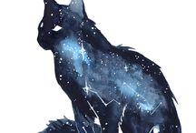 Cats/neko