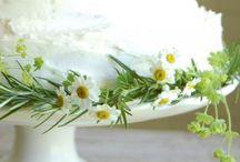 springtime wedding inspiration / by Rosie Parsons