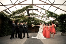 Wedding Photography / Significant moments captured from their special day ~ from focusphotography.ca