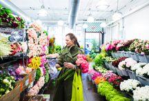 ♥ NY flower market / Photos of the NY flower market. I'll take more photos when I go next week...