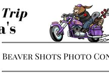 Beaver Shots Photo Contest / Road Trip Rita is holding a Beaver Shots Contest. Open to all members of www.beltdrivebetty.com Rita will choose her favourite Beaver Shot once per month from April to the end of August - those photos chosen will win the photographer a $50 Gas Card.