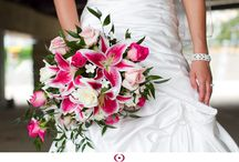 Lily Weddings / A variety of lily (Stargazer, Casablanca, Asiatic, etc) wedding, shower, party, and other special event ideas. #stargazer #casablanca #asiatic #asian #oriental #lily #lilies #wedding #shower #party #ideas