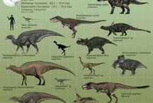 Dinosaurus / by fletcher allen