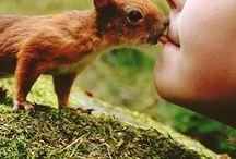 true love / by Kristin Nancy