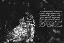 Words on Nature