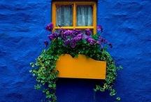 Janelas / Me encantam! #window #janela