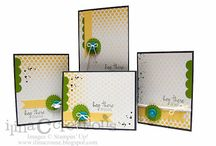 My Paper Pumpkin / lots of ideas using Stampin' Up!'s My Paper Pumpkin / by DDStamps