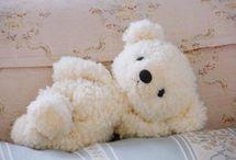 Teddy ♥♥♥