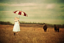 Photography Ideas / by Kate Godwin