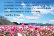 Daisaku quotes