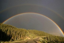 Alaskan Highways / From the famous Alaska Highway and other highways around the state!