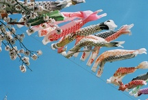 Fishes in the sky