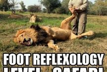 Foot Humor / Even foot doctors have a sense of humor! Get a quick laugh in to brighten your day.