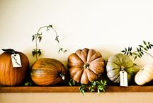 Harvest Mantel! / by Sarah Pogorzelski