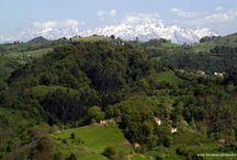 Paisajes rurales de la Comarca de la Sidra / Un paseo por aldeas y caminos, por sendas y bosques de los municipios asturianos de la Comarca de la Sidra (Bimenes, Cabranes, Colunga, Nava, Sariego y Villaviciosa)