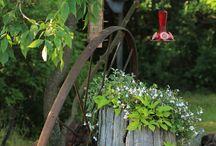 Zahrada dom