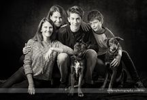 Dog Photography / Photographing Dogs, Pets and their families. Studio work by Volare Photography.