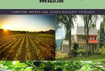 Oregon Wineries / With over 400 wineries in Oregon, the state produces over 16,000 tons of fruit every year and has a multi-billion dollar industry.http://www.kazzit.com/content/oregon-wineries.html