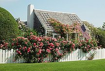 Rose-Covered Cottages / The dreamiest way to add curb appeal to a house's porch, boring balcony, drab wall, tatty fence, and add such instant charm you practically don't need anythine else.  Add climbing roses and a few FILLED window boxes and you have a house that stands above the crowd.