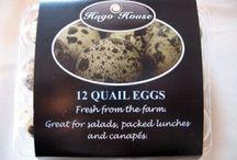 Kwartel eiers