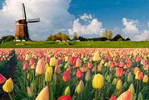Holland / My beautiful Holland