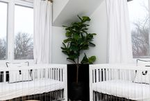 Nursery for Twins / Double the ideas for double the family!