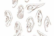 Korvat ja nenät