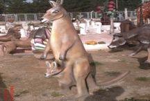 Kanguru Heykelleri