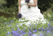 Civil partnership / Same sex marriages