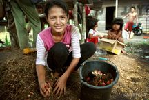 Good oil - a forest solution / Good Oil is an interactive story of an Indonesian community that has found a solution to destructive industrial-scale oil palm plantations. An innovative, independent small-holder approach has delivered social and economic benefits and helped protect the remaining forest. / by Greenpeace