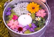 Flower garden ideas / by (Country Lane Folk Art) Becky Levesque