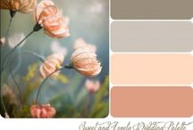 peach grey palette